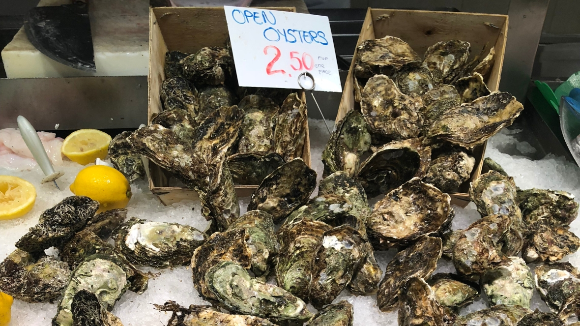Barcelona Oysters